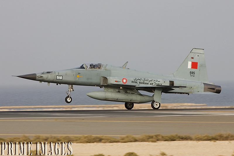 armée du Bahrain  Bahrain7